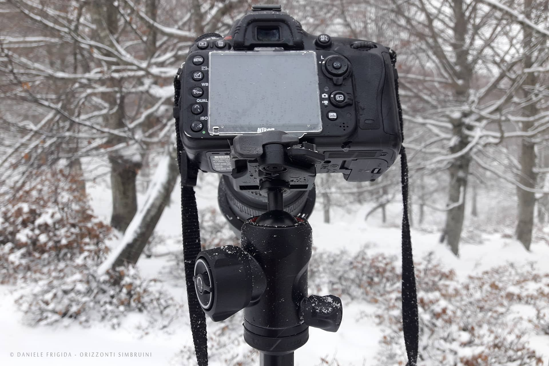 Manfrotto BeFree Advanced + Nikon D610 e Nikon 16-35 f/4
